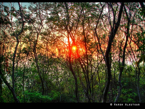 HDR By Harsh alkutkar